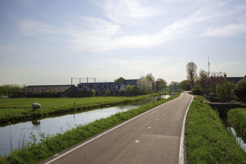 Путь и канал цикла в голландском ландшафте польдера стоковое изображение rf