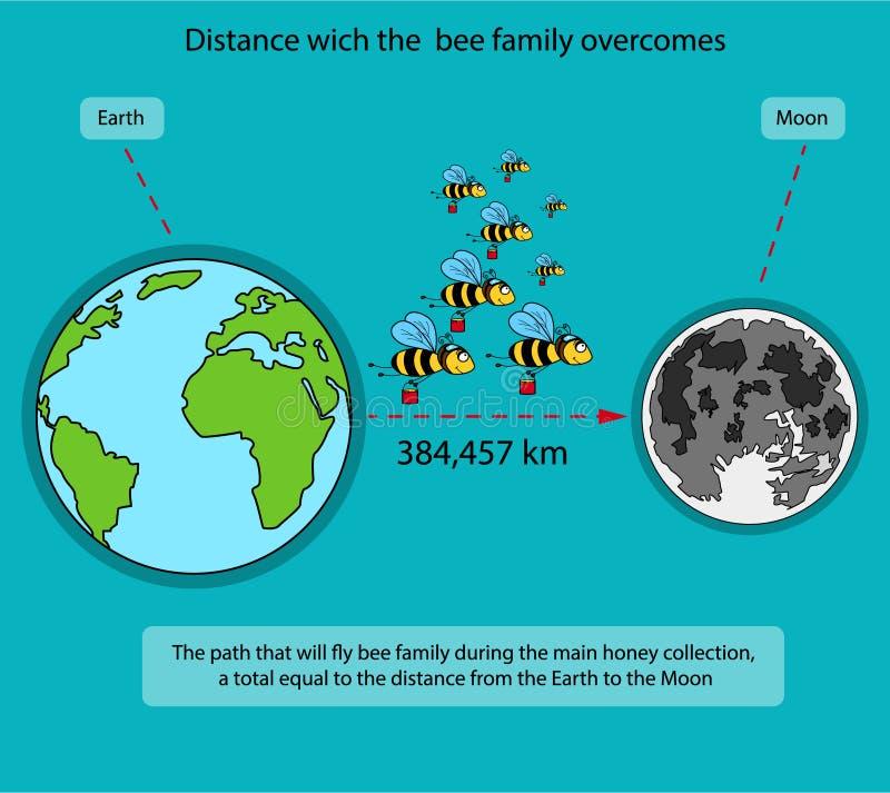 Путь который преодолеван семьей пчел во время главный собирать меда бесплатная иллюстрация