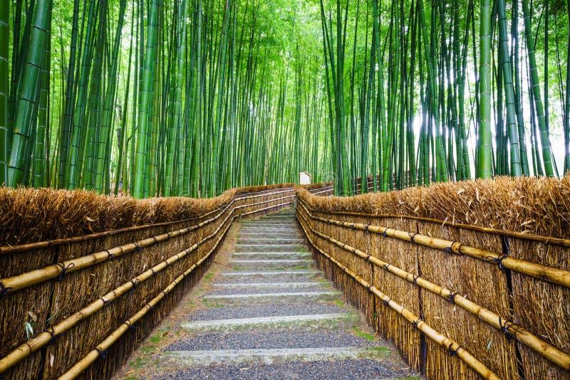 Путь к бамбуковому лесу, Arashiyama, Киото, Японии стоковое фото rf