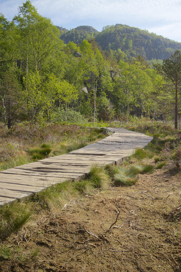 Путь к Preikestolen стоковое изображение rf
