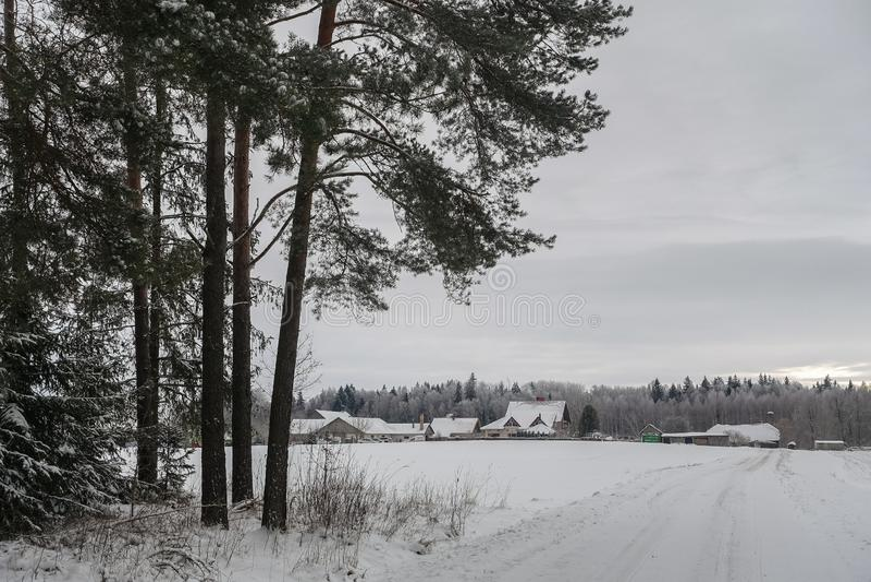 путь леса и лес, поле, все покрыты с снегом стоковое изображение rf
