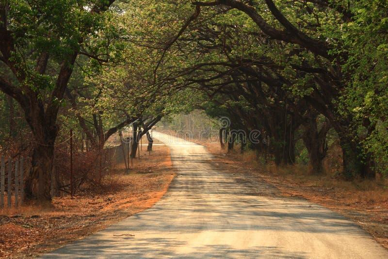 путь мирный стоковая фотография