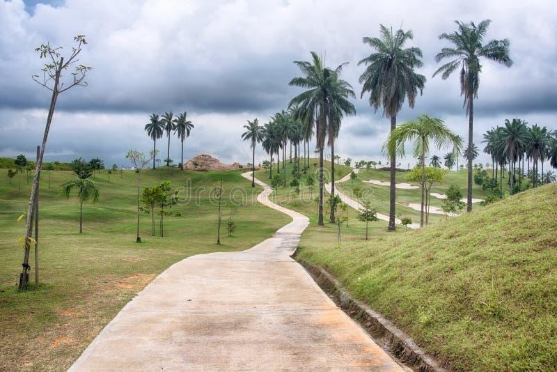 Путь на поле для гольфа стоковые фотографии rf
