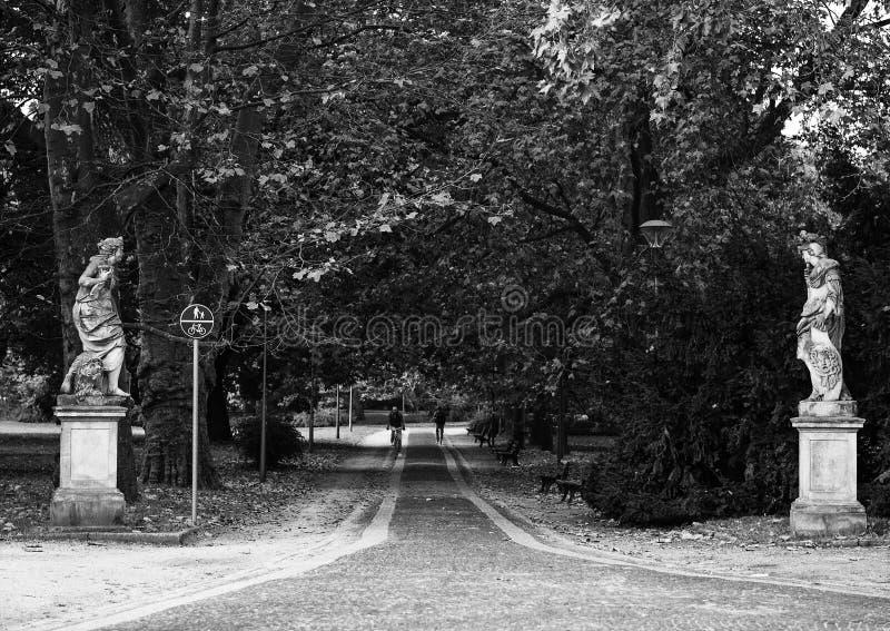 путь парка города wroclaw Польши черная девушка прячет белизну рубашки съемки s человека стоковые фотографии rf