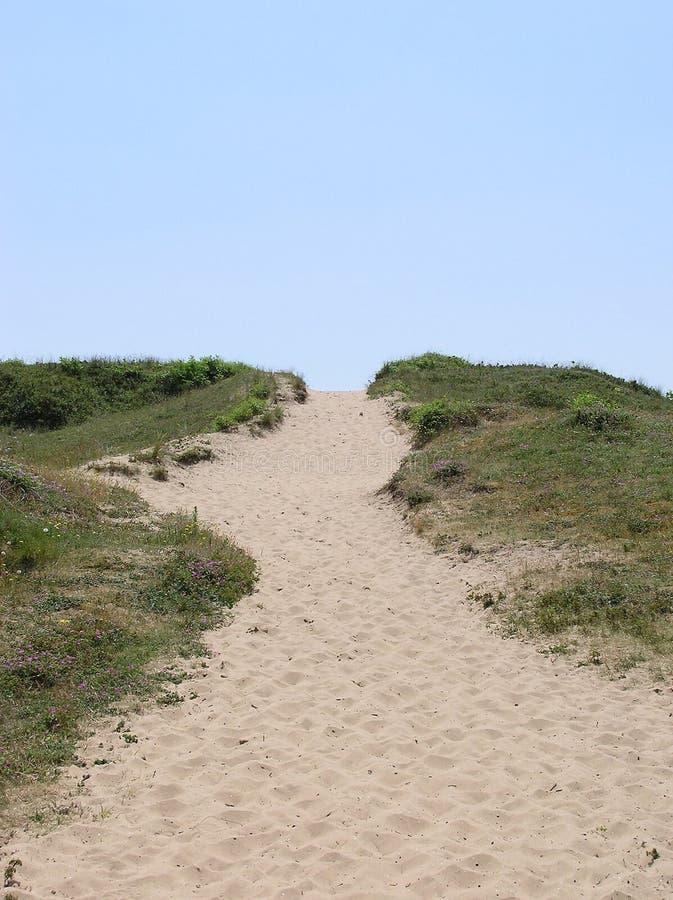 Путь песчанной дюны стоковые фото