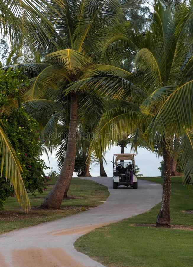 Путь поля для гольфа с тележкой гольфа стоковые фото