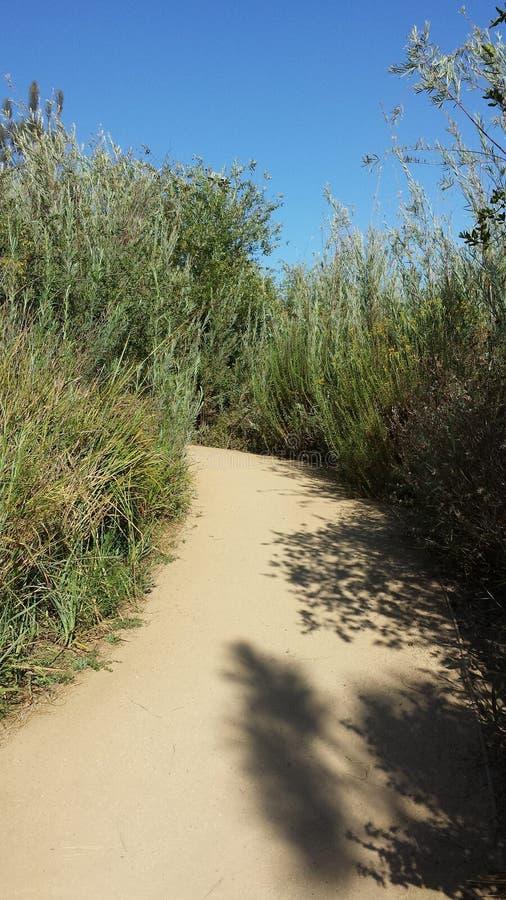 Путь природ стоковое фото rf