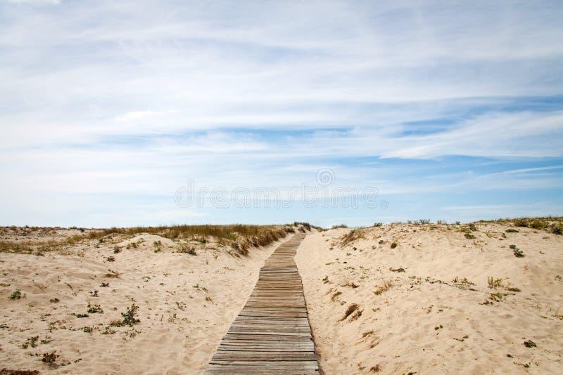 Download путь пляжа к стоковое фото. изображение насчитывающей дюны - 40582646