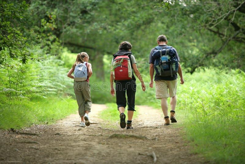 путь семьи стоковое фото