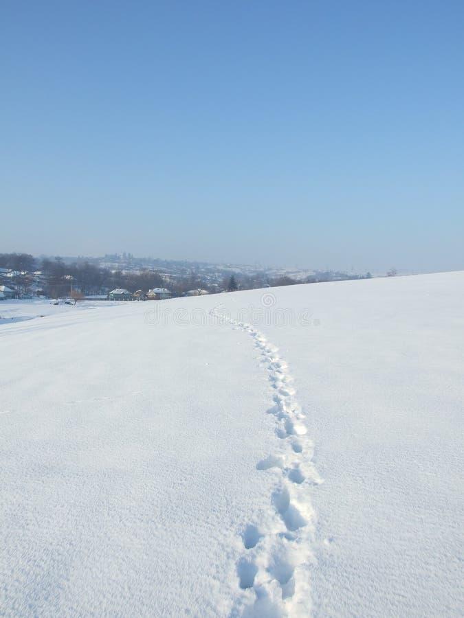 Путь снежка стоковое фото rf