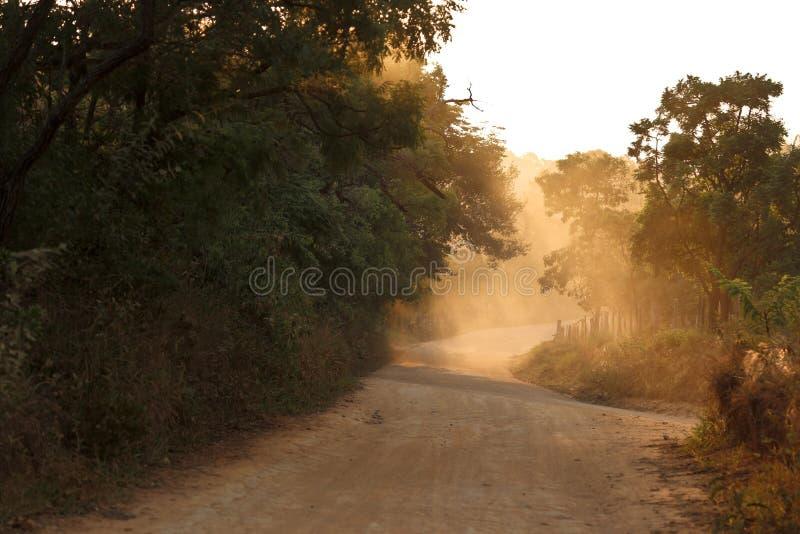 Путь Солнця стоковая фотография