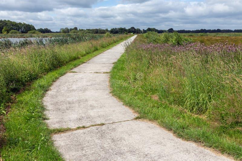 Путь цикла в голландском национальном парке с полями и заболоченными местами стоковое фото