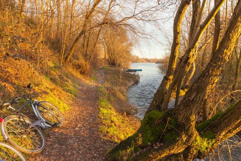 Путь цикла на банках реки Тичино на заходе солнца стоковое фото