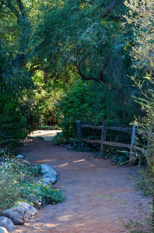 Путь через древесины стоковые изображения rf