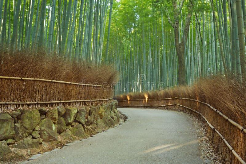 Путь через лес Arashiyama бамбуковый в Японии стоковые изображения rf