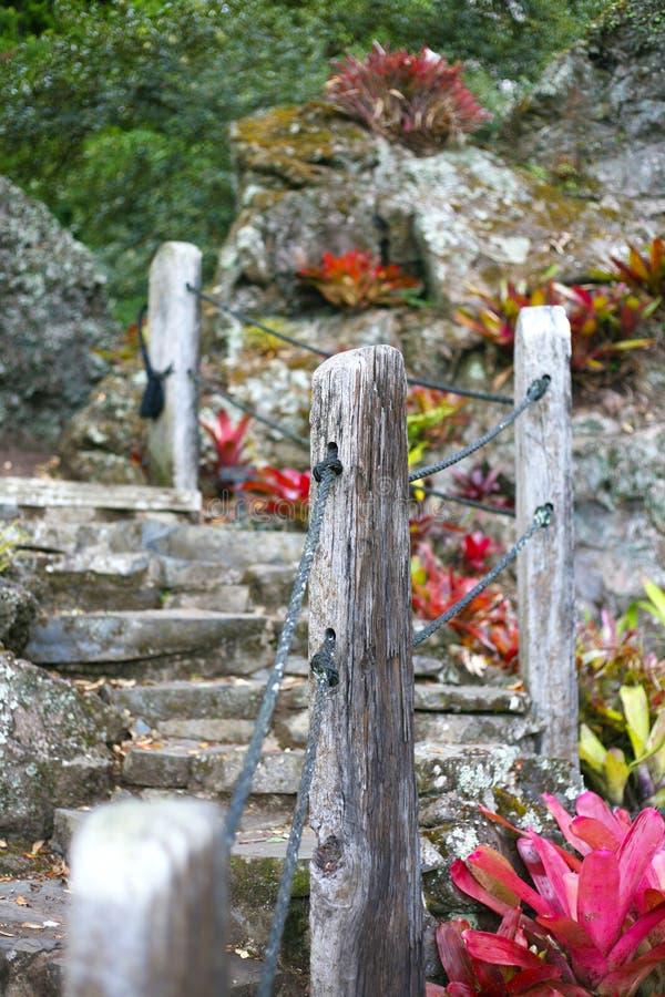 Путь через каменный rockery и заводы стоковые фотографии rf