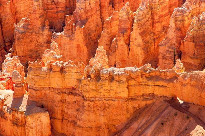 Путь через лабиринт hoodoos, каньон Bryce, Юту стоковые изображения