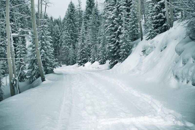 путь 5 9 снежный стоковое фото rf