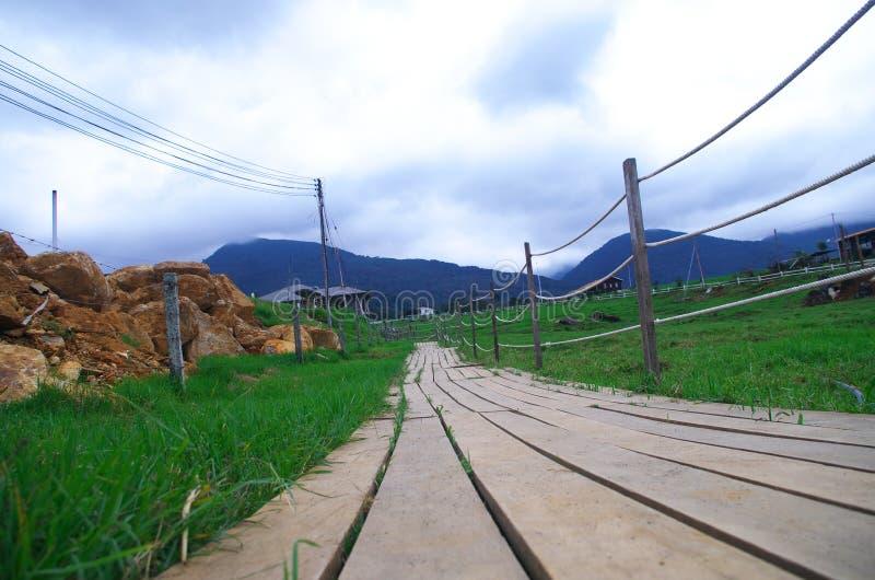 путь yosemite национального парка стоковое изображение rf