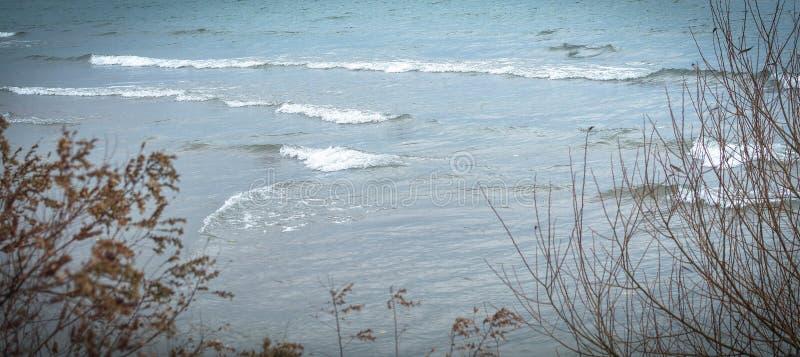Пучок воды стоковое фото rf