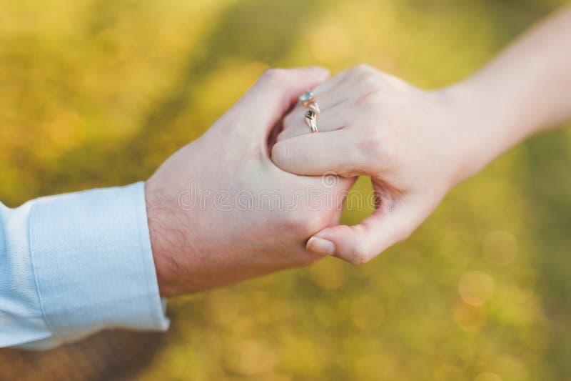 пуща пар вручает влюбленность стоковое изображение rf