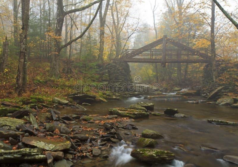 пуща тумана catskills моста деревянная стоковые изображения