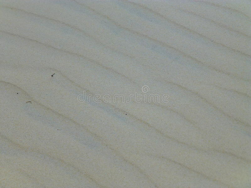 Пульсации в песке стоковые фото