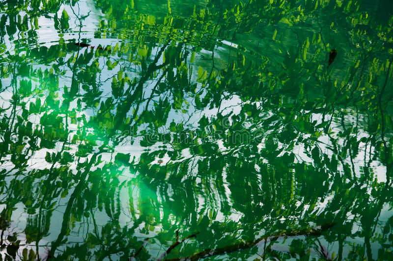 Пульсации на воде стоковое изображение rf