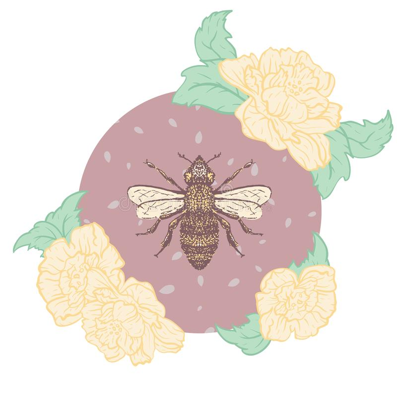 Пчела меда вектора с печатью иллюстрации роз иллюстрация вектора