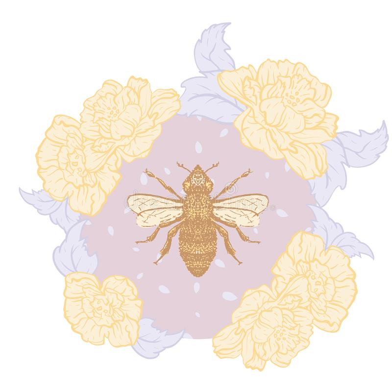 Пчела меда вектора с розами в пастельной печати иллюстрации иллюстрация штока