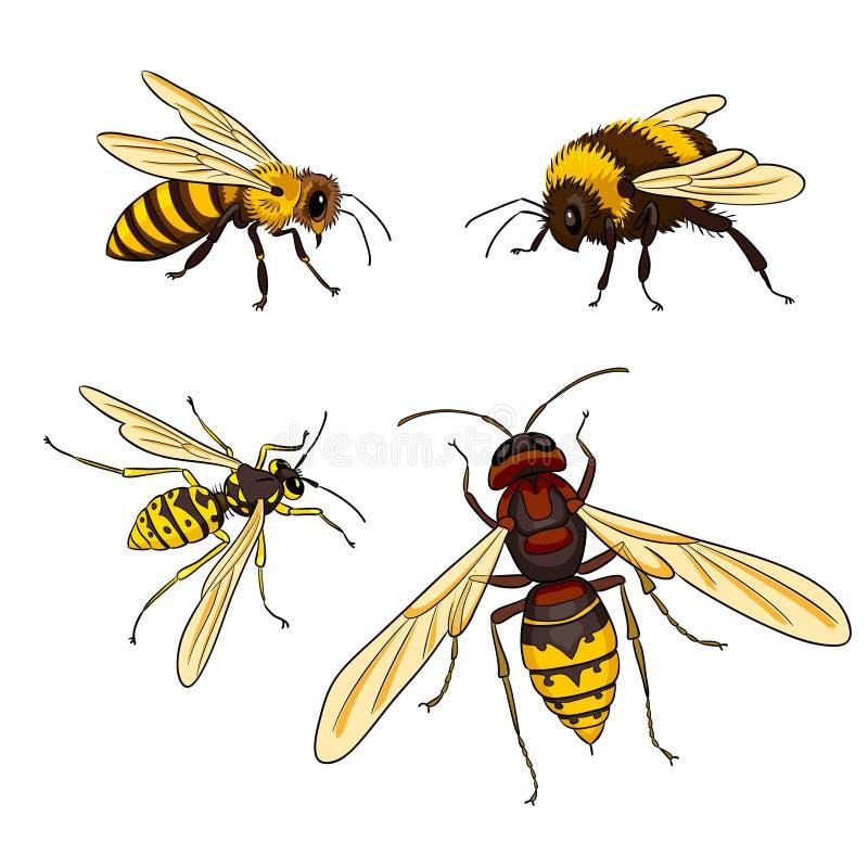 Пчела, оса, шмель, шершень - vector иллюстрация бесплатная иллюстрация