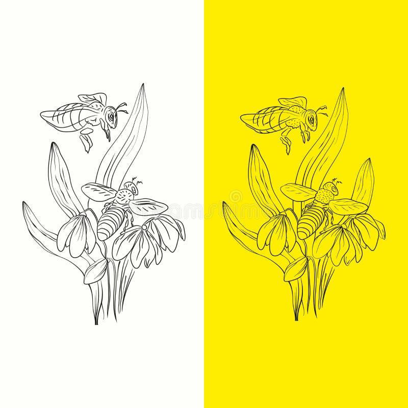 Пчелы иллюстрации собирают мед и первые цветки весны в лесе иллюстрация вектора