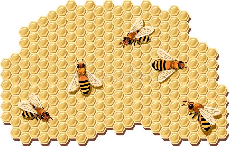 Пчелы производящ мед иллюстрация штока