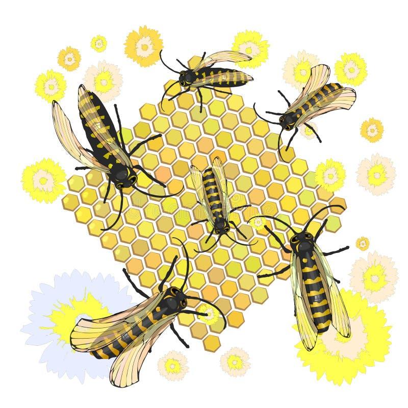 пчелы собирают мед Часть 2 смешной истории о 2 дьяволах на диско иллюстрация вектора