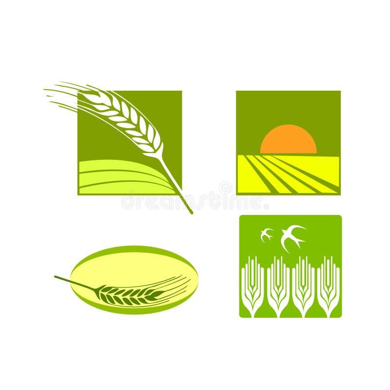 пшеница вектора риса логоса еды иллюстрация вектора