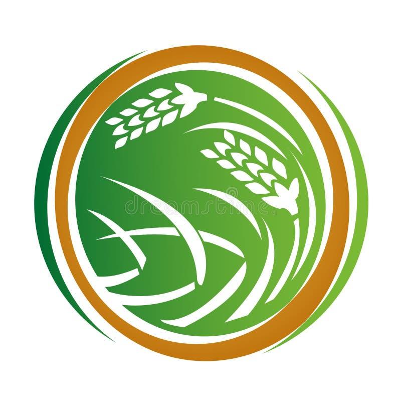 пшеница иконы бесплатная иллюстрация