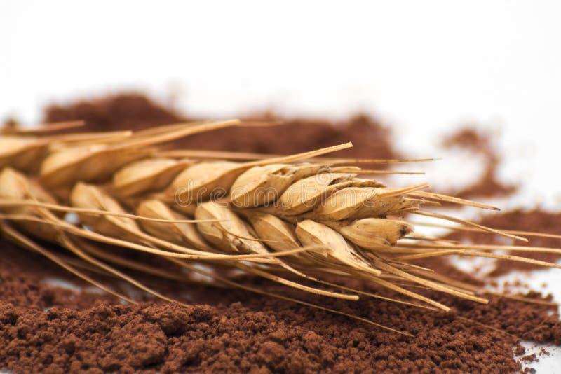 Пшеница и земной кофе Макрос стоковое изображение