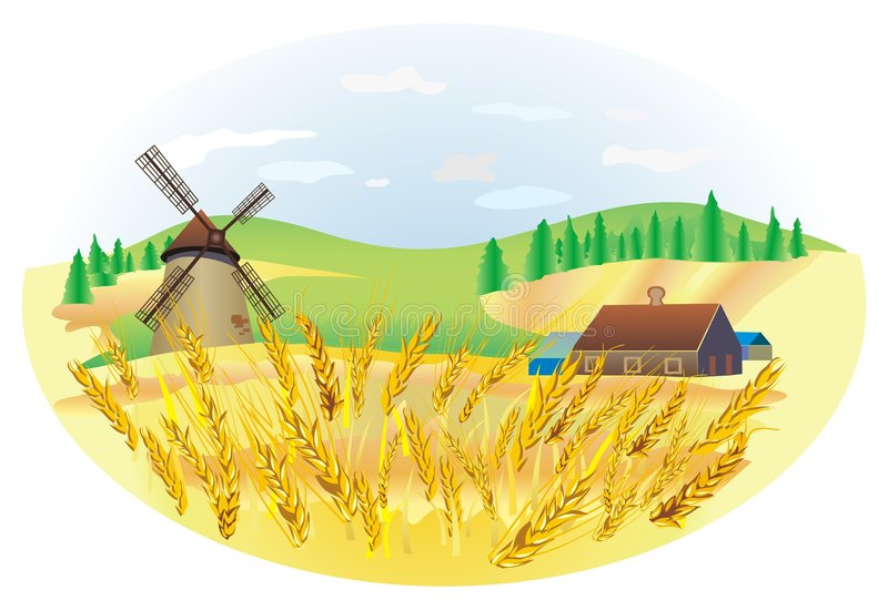 пшеница ландшафта иллюстрация штока