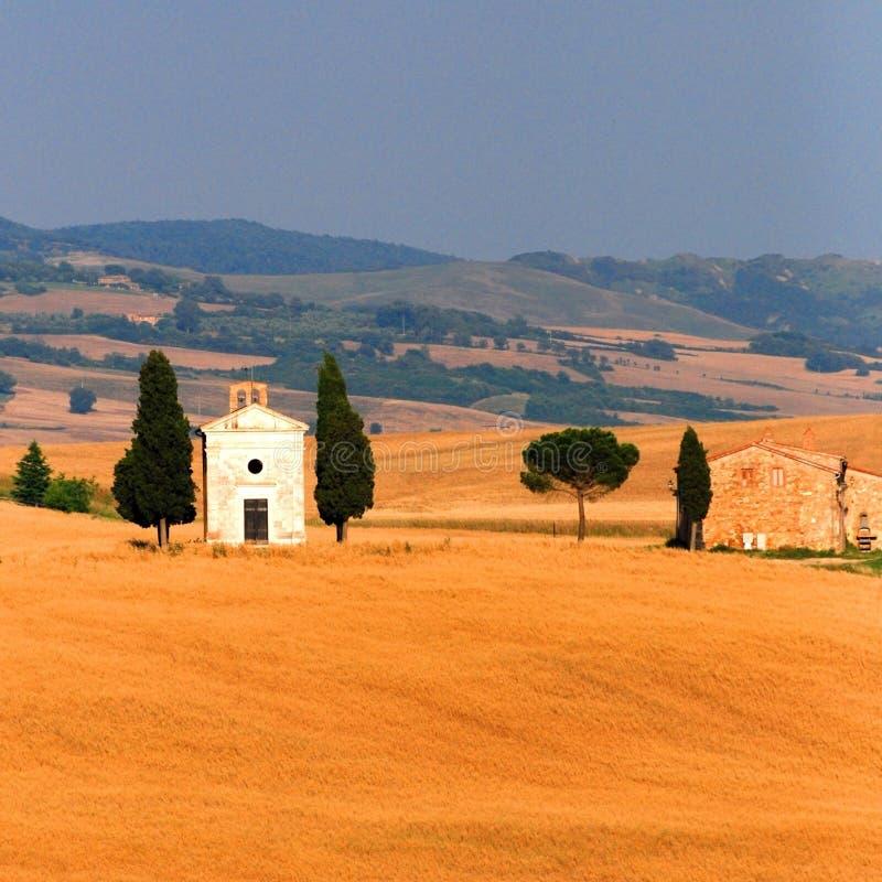 пшеница поля церков стоковое фото rf