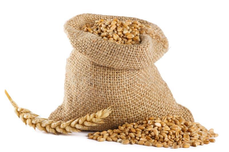пшеница текстуры зерна конструкции предпосылки стоковые фотографии rf