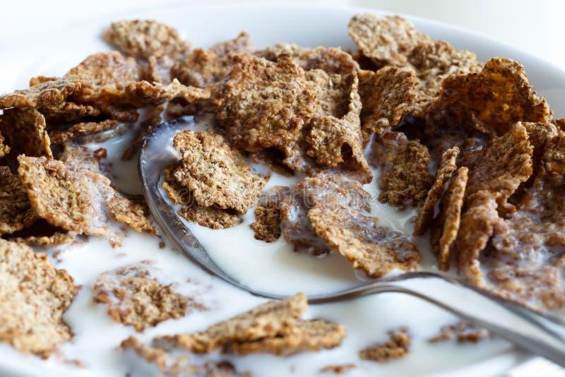 пшеница хлопий для завтрака отрубей стоковые изображения rf