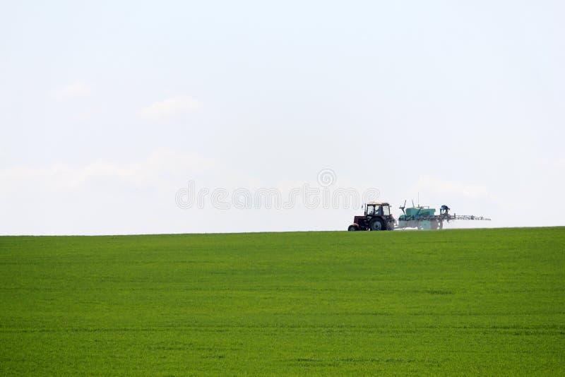 Пшеничное поле трактора распыляя с спрейером в весеннем времени стоковые фото