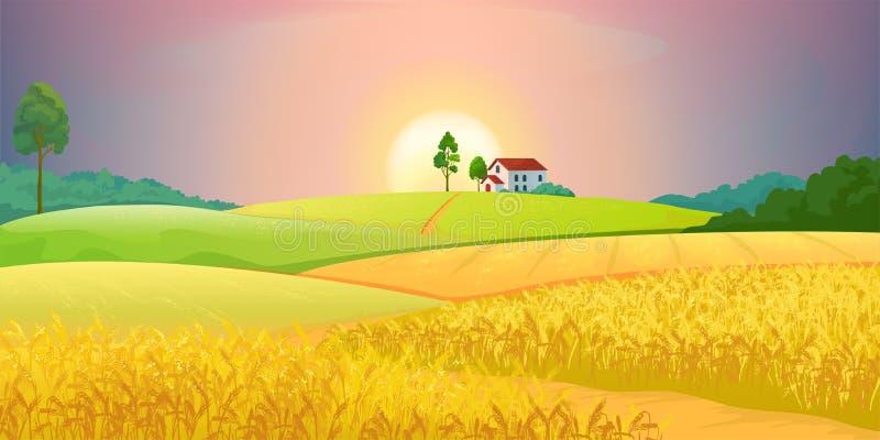 Пшеничные поля Ландшафт фермы деревни с зелеными холмами и заходом солнца Сельская местность вектора сельская аграрная со зданиям иллюстрация штока