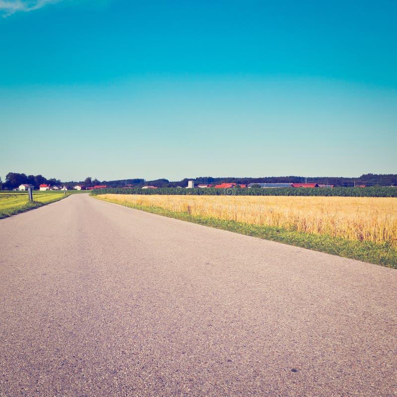 Download Пшеничные поля стоковое фото. изображение насчитывающей европа - 41658210