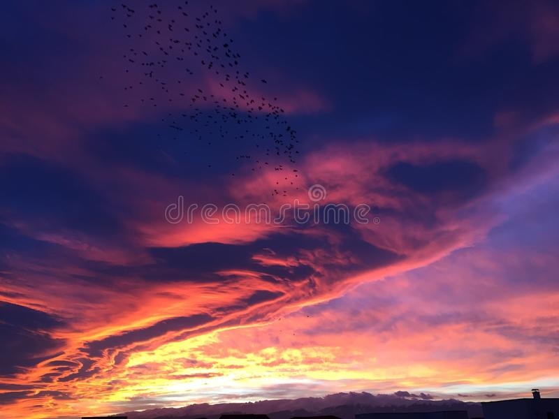 пылает небо стоковые фото