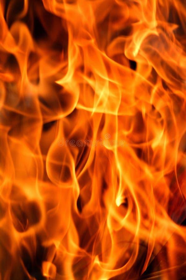 пылать пожара стоковые фото