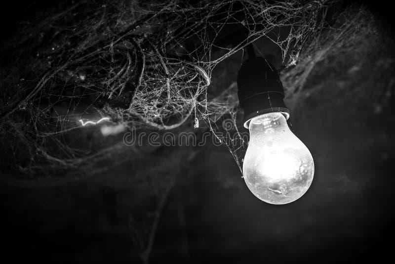 Пылевоздушная электрическая лампочка снятая в черно-белом стоковая фотография rf