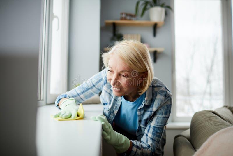 Пылясь окн-силл стоковые изображения rf