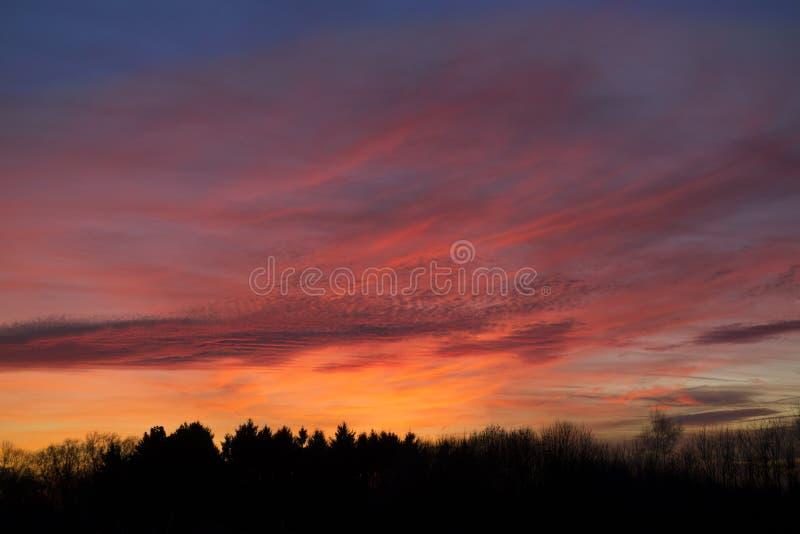 Пышное небо вечера стоковая фотография