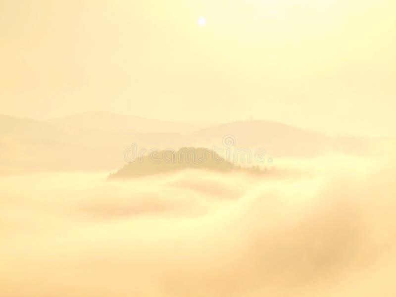 Пышный ландшафт fogy, нежный розовый туманный восход солнца в красивой долине парка Саксонии Швейцарии Холмы в тумане стоковое фото